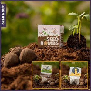Grab a Gift Seed-Bomb - Promotionele zaadbal in doosje met logo bedrukking