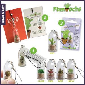 Grab a Gift Plantochi - vetplantje of cactus met logo bedrukking